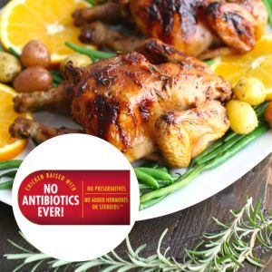 Frozen US premium Cornish Hen Chicken