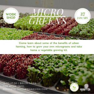 Mighty Greens – MicroGreens Workshop